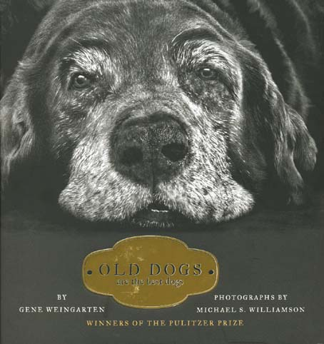 old dogs_1.jpg